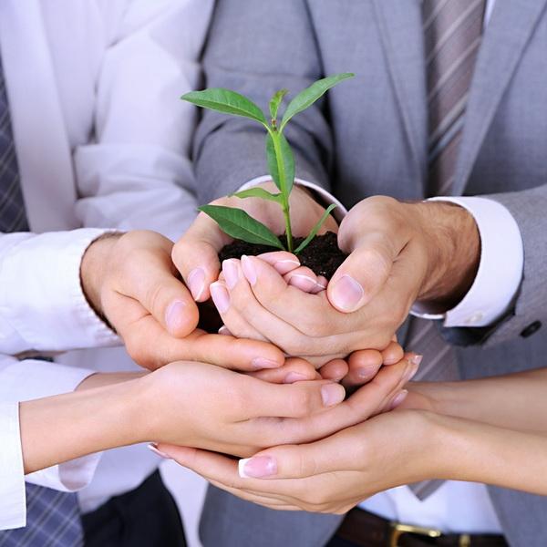 Открытие фирм в минске участники проекта бизнес план